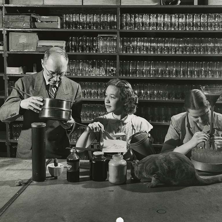 Hermann Muller (left) and two female lab members preparing fruit fly media. A cat drinks from a small saucer on the table.