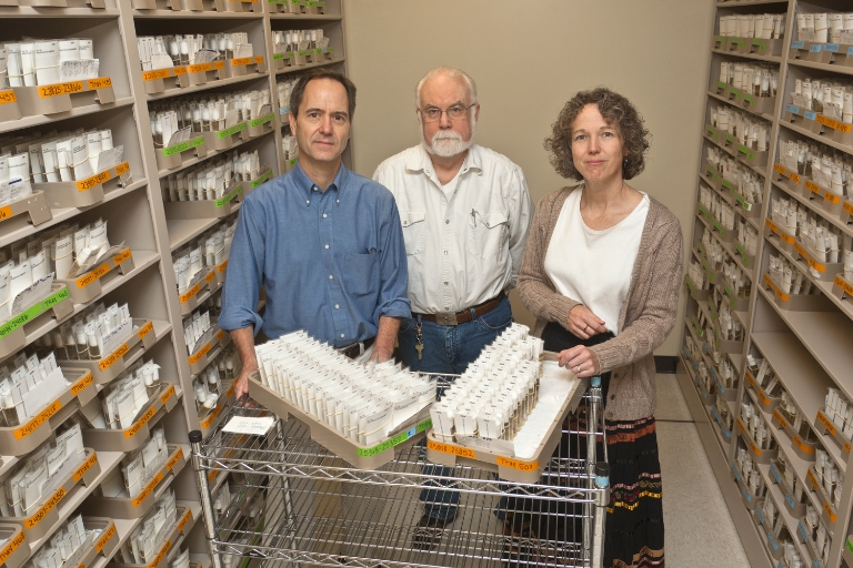IU Distinguished Professor Thomas Kaufman, center, is co-director of the IU Drosophila Stock Center. Kevin Cook, left, is director of collections management. Kim Cook, right, is laboratory manager. Kaufman also serves as director of the IU FlyBase facility.