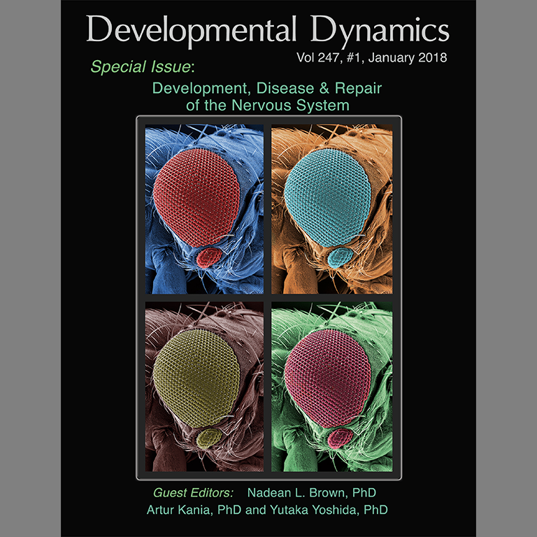 Cover of the journal Developmental Dynamics, volume 247, #1, January 2018, with a photo from IU Biology's Justin Kumar's lab.