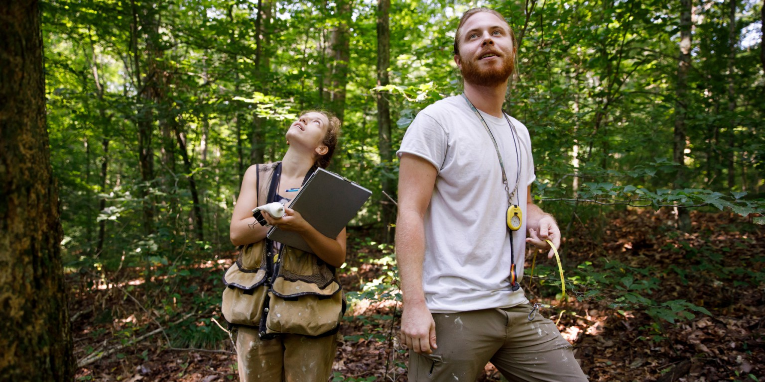 IU forest ecology technicians Aubree Keurajian and Matthias Gaffney at Lilly-Dickey Woods.