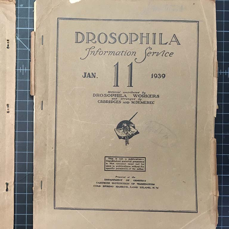 Front cover of Drosophila Information Service, January 11, 1939.