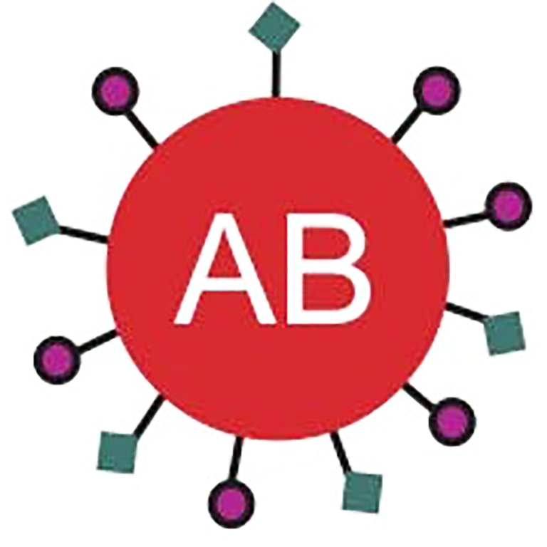 Image depicting sugar markers on a red blood cell type AB.