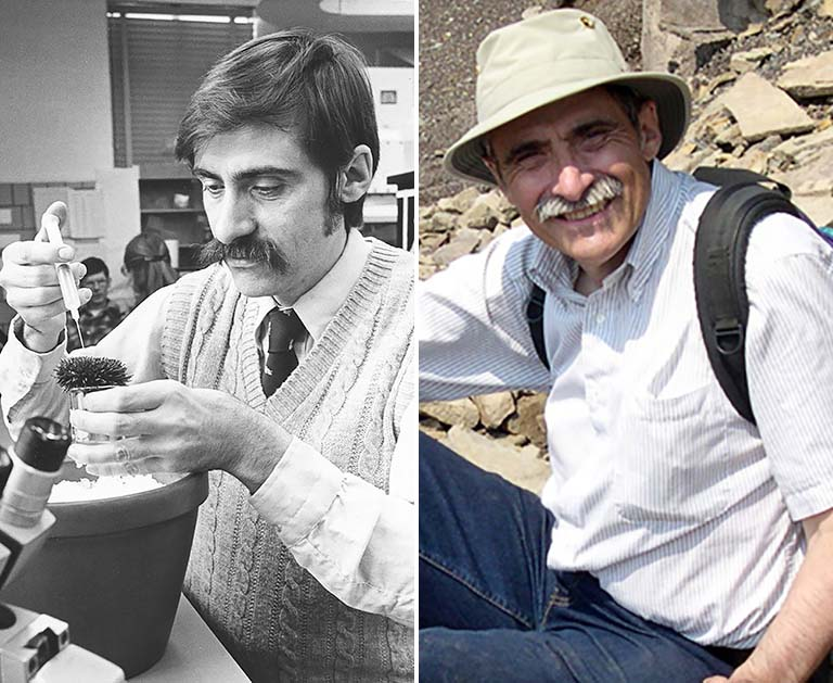 Left: Rudy Raff works with a sea urchin in 1980. Right: Raff on vacation at the fossil cliffs of Joggins ca. 2006.